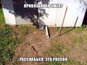 Фото приколы про русских и Россию - -MA1E3wg_jU.jpg