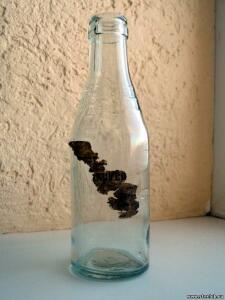 Другие бутылки из под уксуса - 9349796.jpg