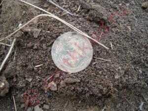 А поедим-ка мы покопаем. - DSC05252.JPG