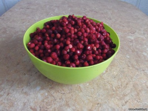 Грибы, ягоды и другие запасы... - 0450456.jpg