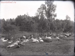 Уходящая натура на снимках Александра Антоновича Беликова 1925 год - 937356040693.jpg