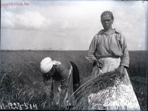 Уходящая натура. Село Синявино на снимках Александра Антоновича Беликова 1926 года - eebaed15d528.jpg