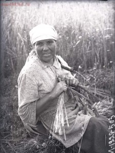 Уходящая натура. Село Синявино на снимках Александра Антоновича Беликова 1926 года - db03f257115c.jpg