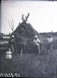 Уходящая натура. Село Синявино на снимках Александра Антоновича Беликова 1926 года - c8b6c5ac8c07.jpg