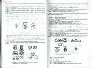 Древнерусские ременные наборные украшения - 030-031.jpg