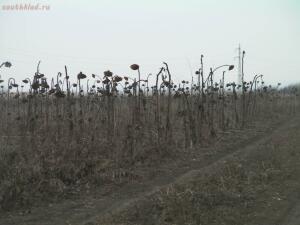 Видеоразоблачение от Синих Кхмеров  - SANY0134-1-1600x1200.JPG