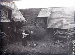 Уходящая натура на снимках Александра Антоновича Беликова 1925 год - f09737c00524.jpg
