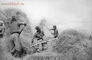 Фото Сталинградской битвы. 23 августа 1942 – 2 февраля 1943 гг.  - 14.jpg