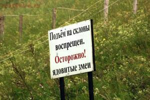 Путешествие в Дивногорье - DSC_0084.jpg