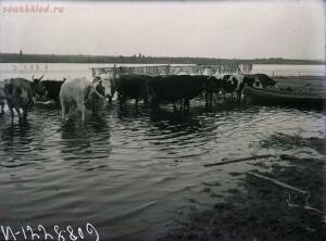 Уходящая натура на снимках Александра Антоновича Беликова 1925 год - 99a6438534fd.jpg