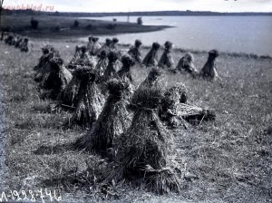 Уходящая натура на снимках Александра Антоновича Беликова 1925 год - 5d0422d4b53b.jpg