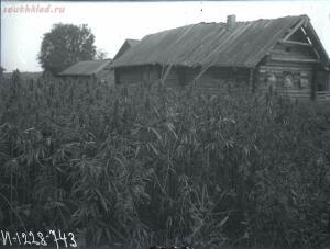 Уходящая натура на снимках Александра Антоновича Беликова 1925 год - 2218107850c0.jpg