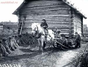 Уходящая натура на снимках Александра Антоновича Беликова 1925 год - 49782600026_233e4f3aca_o.jpg