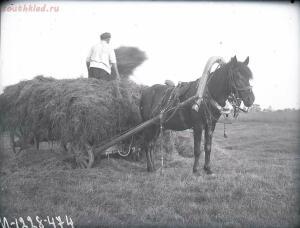 Уходящая натура на снимках Александра Антоновича Беликова 1925 год - a6d5a07f4b6c.jpg