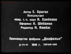 Сталинский план преобразования природы - 02-zE7NM20ldV0.jpg