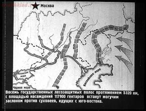 Сталинский план преобразования природы - 10-Ei351FeApA8.jpg