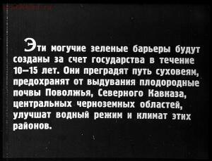 Сталинский план преобразования природы - 19-0XbATw3_F7M.jpg