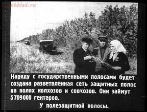 Сталинский план преобразования природы - 20-mnOobmUZV0U.jpg