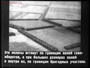 Сталинский план преобразования природы - 21-D9q5tG9wTMA.jpg