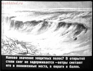 Сталинский план преобразования природы - 22-88VBVoL5o1E.jpg
