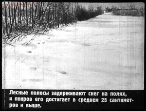 Сталинский план преобразования природы - 23-CPxiBJSEVuE.jpg
