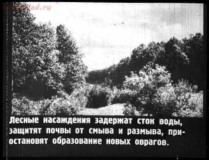 Сталинский план преобразования природы - 29-ImDcjG0pBeA.jpg