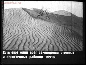 Сталинский план преобразования природы - 30-DUO6Z6YQwOw.jpg