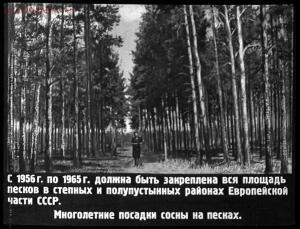 Сталинский план преобразования природы - 33-1QXrr-4P1I.jpg