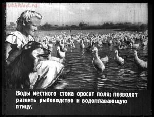 Сталинский план преобразования природы - 35-U1vjPvw33WE.jpg