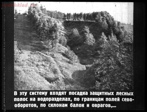 Сталинский план преобразования природы - 37-1wcqKFpXDKA.jpg