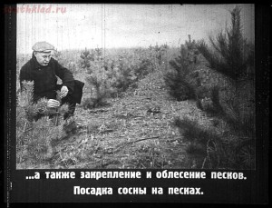 Сталинский план преобразования природы - 39-Gu2utX3G9tY.jpg