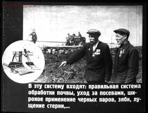 Сталинский план преобразования природы - 40-IWzJ5lsxlcU.jpg