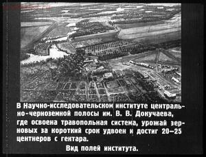 Сталинский план преобразования природы - 45-kgD2hiZHL74.jpg