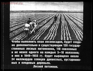 Сталинский план преобразования природы - 48-dKlaVXd6YSk.jpg