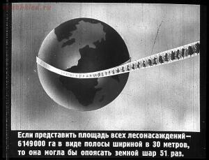 Сталинский план преобразования природы - 49-rn3-jJo_M0k.jpg