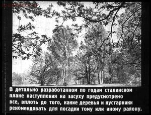 Сталинский план преобразования природы - 50-JMFH-hiN-0s.jpg