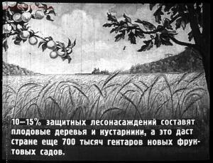 Сталинский план преобразования природы - 51-7NFkyXkQ-JI.jpg
