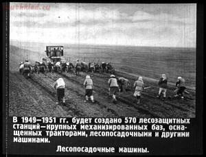 Сталинский план преобразования природы - 52-H3d6jaesCvU.jpg