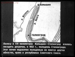 Сталинский план преобразования природы - 56-i50HMCkWmTU.jpg