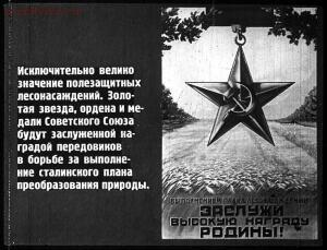 Сталинский план преобразования природы - 57-DG1AXVIi2I0.jpg