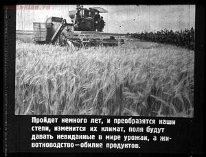 Сталинский план преобразования природы - 58-rJcjOCbV-ao.jpg