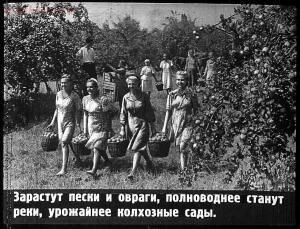 Сталинский план преобразования природы - 59-ApiiVlfIWiU.jpg