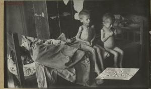 Дети Голодомора 1921-1922 гг. - 50596810507_da31cc0e84_h.jpg