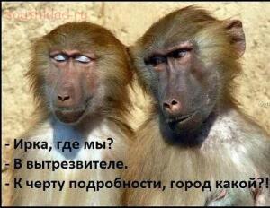 О девушках... - photo_1447258160.jpg