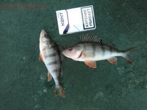 Зимняя рыбалка - 7.jpg
