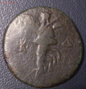 монета пантикапея до 16.2.16 22.00 - DSC_0035-2.jpg