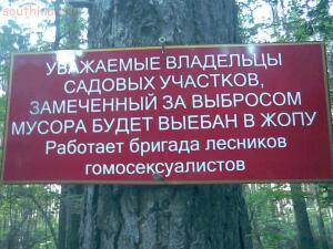 Опасные места Ростовской области. - 1362634442_lesniki.jpg