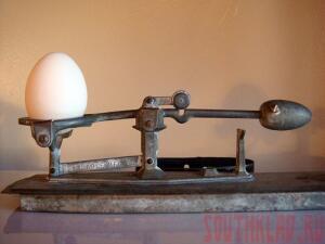 Прибор для стандартизации яйца - 20120202_egg3.jpg