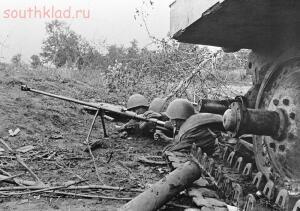 Оружие второй мировой - птр..jpg