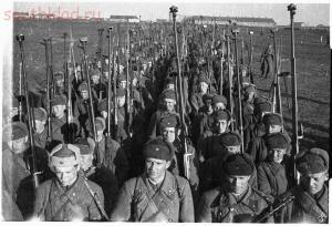 Оружие второй мировой - птрс и птрд..jpg
